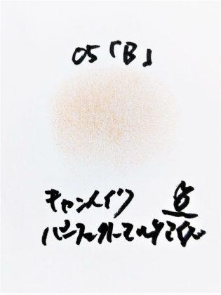 キャンメイク CANMAKE 新作コスメ アイシャドウ パーフェクトマルチアイズ 新色 05 アーモンドモカ B 色味