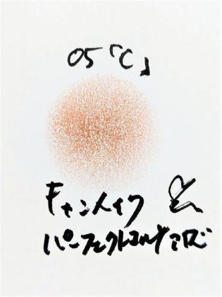 キャンメイク CANMAKE 新作コスメ アイシャドウ パーフェクトマルチアイズ 新色 05 アーモンドモカ C 色味