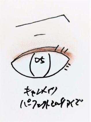キャンメイク CANMAKE 新作コスメ アイシャドウ パーフェクトマルチアイズ 新色 05 アーモンドモカ 塗り方 使い方