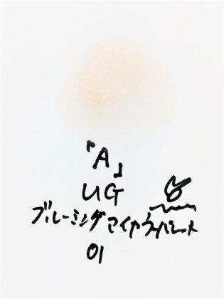 DAISO×URGLAM 9色アイシャドウ ブルーミングアイカラーパレット 01-A 色味