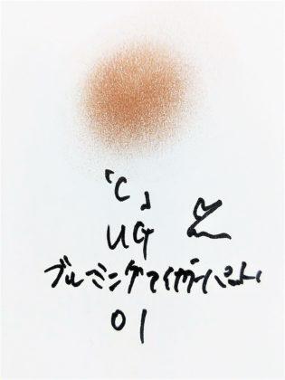 DAISO×URGLAM 9色アイシャドウ ブルーミングアイカラーパレット 01-C 色味