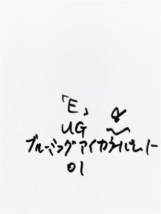 DAISO×URGLAM 9色アイシャドウ ブルーミングアイカラーパレット 01-E 色味