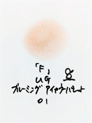 DAISO×URGLAM 9色アイシャドウ ブルーミングアイカラーパレット 01-F 色味