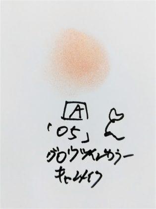 CANMAKE(キャンメイク) 2019年夏 アイシャドウ グロウツインカラー 05ピンクベージュパール A 色味(紙)