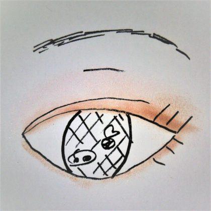 エレガンス(Elégance) アイシャドウ ヌーヴェルアイズ 29 やさしく存在感のある印象 使い方 完成形 ラメ感(紙)