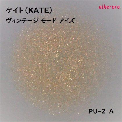 ケイト(KATE) ヴィンテージモードアイズ PU-2 A ラメ感