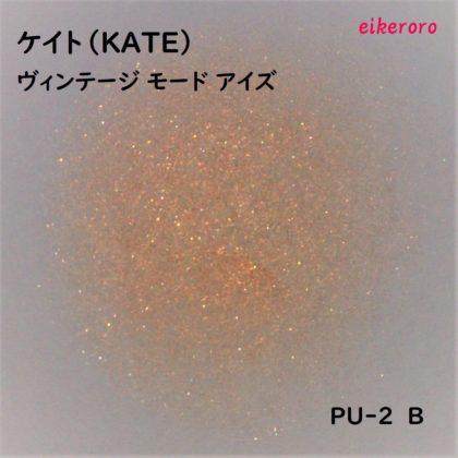 ケイト(KATE) ヴィンテージモードアイズ PU-2 B ラメ感