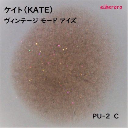 ケイト(KATE) ヴィンテージモードアイズ PU-2 C ラメ感