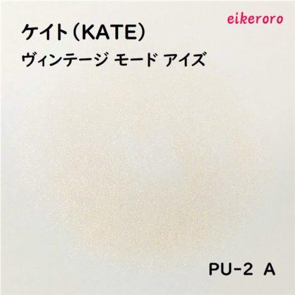 ケイト(KATE) ヴィンテージモードアイズ PU-2 A 色味