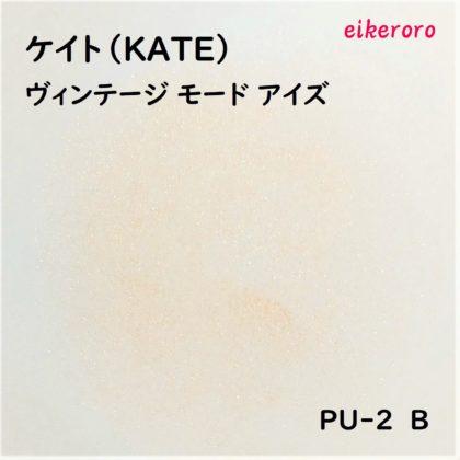 ケイト(KATE) ヴィンテージモードアイズ PU-2 B 色味