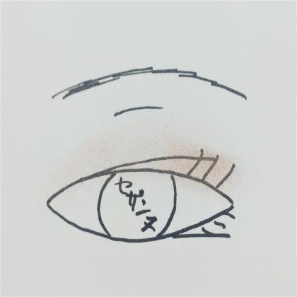 セザンヌ春新作(発売:2月14日)「シングルカラーアイシャドウ 07:アイスブルー 09:グレイッシュブラウン」使い方 仕上がりイメージ