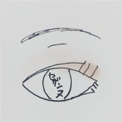 セザンヌ春新作(発売:2月14日)「シングルカラーアイシャドウ 08:ゴールドピンク 09:グレイッシュブラウン」使い方 仕上がりイメージ