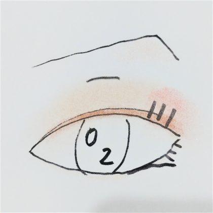 ユーアーグラム(URGLAM) ベルベットアイカラーパレット 02 ピンク&ブラウン 使い方 完成イメージ